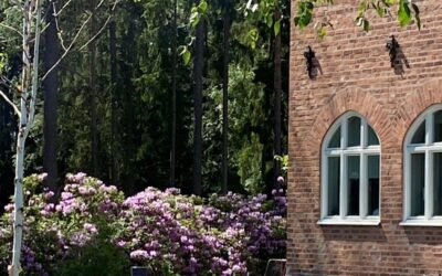 UTHYRD. Hyresrätt, Sanatorieskogen, Örebro